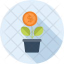 Coin Flower Growth Icon