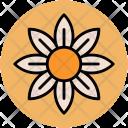 Columbine Flower Wild Icon