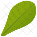 Common Milkweed Icon