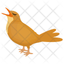 Common Myna Sparrow Feather Creature Icon