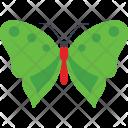Common Wing Species Icon