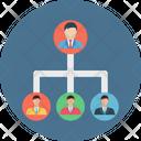 Company Structure Icon
