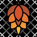 Cone Pine Pine Tree Icon