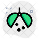 Confetti Ball Icon