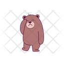 Confused Bear Icon