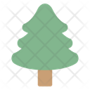 Conifer Evergreen Pine Icon