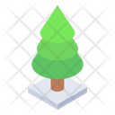 Conifer Evergreen Pine Tree Icon
