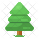 Conifer Tree Natural Tree Shrub Icon