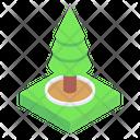 Greenery Conifer Tree Shrub Icon