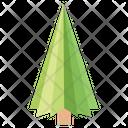 Poplar Tree Fir Tree Pine Tree Icon