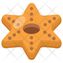 Cookie Biscuit Brownie Icon