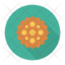Cookies Biscuit Muffin Icon