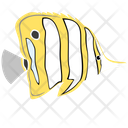 Copperband Butterfly Fish Icon