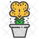 Coral cactus Icon