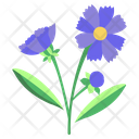 Coreopsis Flower Blossom Icon