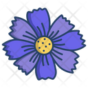 Coreopsis Flower Flowers Icon