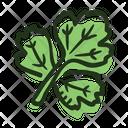 Coriander Leaf Plant Icon