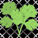 Coriander Leaves Icon
