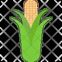 Cob Corn Corncob Icon