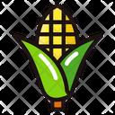Corn Vegetable Organic Icon
