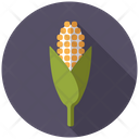 Corn Crop Harvest Icon