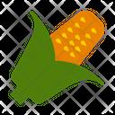 Corn Vegetable Autumn Icon