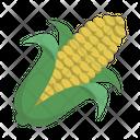 Cob Maize Vegetable Icon