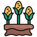 Corn Agriculture Harvest Icon