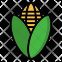 Corn Maize Plant Icon