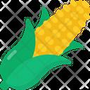 Corn Maize Vegetable Icon