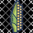 Corn Vegetarian Vegetable Icon