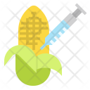 Corn genetics Icon