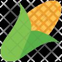 Corncob Grain Maize Icon