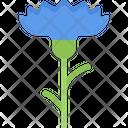 Cornflower Flower Nature Icon