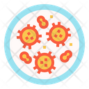 Bacteria Biology Research Icon