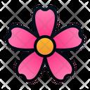 Cosmos Flower Icon