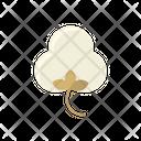 Cotton Organic Natural Icon