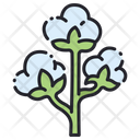 Cotton Flower Flower Agriculture Icon