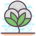 Cotton Flower Cotton Cotton Crop Icon