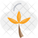 Cotton Flowerm Cotton Flower Crop Icon