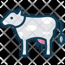 Cowv Cow Domestic Animal Icon