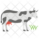 Cow Cattle Animal Icon