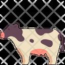 Pet Animal Domestic Icon