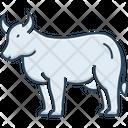 Cow Bossy Livestock Icon