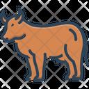 Cow Farming Bossy Icon