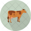 Cow Cattle Dairy Icon