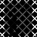 Coweb Ceiling Cobweb Icon