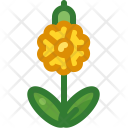Cowslip Icon