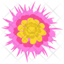 Cowslip Primrose Decoration Icon