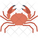 Crab Forest Animal Icon